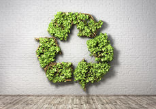 The green plant in form of recycling symbol on a br Stock Photo