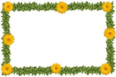 Green plant frame with flowers Stock Photo