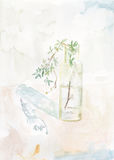 Green Plant in a glass Bottle. Original Watercolour painting of a green leafy plant in a glass bottle Stock Photos