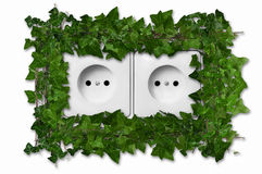 Green plant growing from wall outlet Royalty Free Stock Image