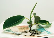 plant grows through iron money coins and dollar bills on a white background