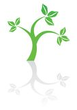 Green plant icon Stock Photos