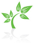 Green plant icon. With shadow,  illustration Royalty Free Stock Photos