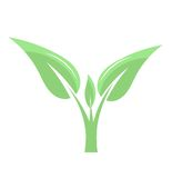 Green plant icon Royalty Free Stock Photography