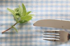 Green plant knife fork table. A green plant, a knife and a fork on a table Royalty Free Stock Images