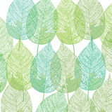 Green plant leaves pattern Royalty Free Stock Photos