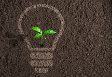 Green plant in light bulb silhouette on soil Royalty Free Stock Image