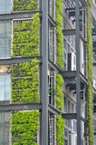 Green plant and modern building. Green plant attached on external of modern building, shown as repeated shape and color, means environment protection, art, and Royalty Free Stock Photos