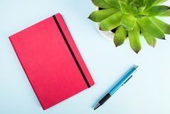 Green plant, red notebook, pen close up on blue background. Blog concept and idea Stock Photo
