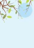 Green plant retro background Stock Image