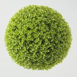 Green plant sphere on white. Background stock photos