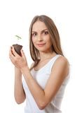 Green plant sprout in female hand Royalty Free Stock Image