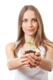 Green plant sprout in female hand Stock Photo