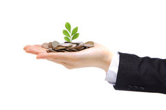 Green plant sprouting from hand with money Stock Photo