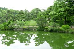 Green plant, tree and lake in zen garden. Green plant, tree and lake in the zen garden Stock Photography