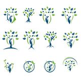 Green Plant Tree Logo Icon Collection Stock Image