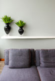 Green plant in vase with comfortable sofa Royalty Free Stock Image