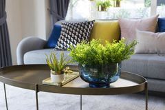 Green plant vase on table with colorful cushion on sofa. Green plant vase on bronze table with colorful cushion on gray sofa royalty free stock photo