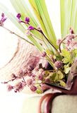 Green plant and violet flowers Royalty Free Stock Image