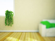 Green plant on the windowsill Royalty Free Stock Photos
