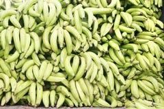 Green plantains Royalty Free Stock Photo