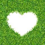 green planterar litet Royaltyfri Fotografi