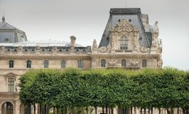 Green plantings. Green plantings near to the Louvre museum, Paris, France Stock Image