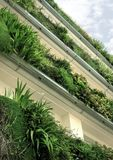 Green plants on balconies Stock Photos