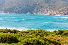 Green plants and blue sea in Porto Ferro Stock Photography