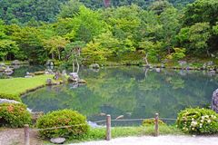 Green plants, mountain, fish, lake with reflection in Japan zen. The green plants, mountain, fish, lake with reflection in Japan zen garden stock photography