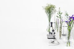 Green plants and scientific equipment in biology laborotary. Microscope with test tubes / glass containers and clamp and green. Plants and flowers in a white stock photo