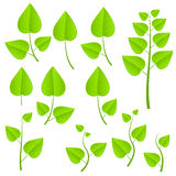 Green plants set Royalty Free Stock Photo