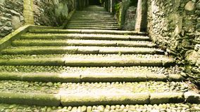 Green plants and stone stairs. Old stairway and sunlight. History at your feet stock footage