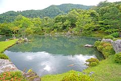 Green plants, mountain, fish, lake with reflection in Japan zen. The green plants, trees, mountain, fish, lake with reflection in the Japan zen garden stock image