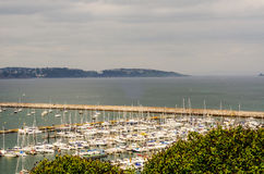 Green plants and view on the boats and yachts anchored in a harb Stock Photography