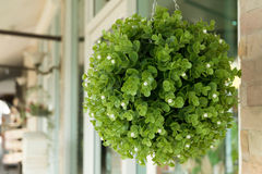 Green plastic bouquet flowers hanging decoration Royalty Free Stock Photo