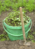 Green plastic bucket. With torn grass and small rake Royalty Free Stock Photos