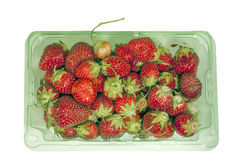 Green plastic container filled with fresh strawberries Royalty Free Stock Photography