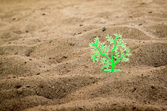 Green Plastic Tree in Sand Royalty Free Stock Photo
