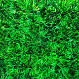 Green plastic turf grass Royalty Free Stock Photos