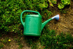 Green plastic watering can Stock Images