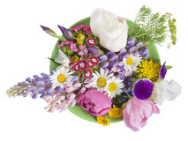 Green plate with June flowers Stock Photography