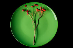 Green plate and red berries stock images