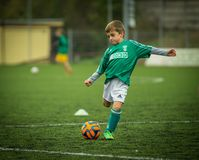 Green, Player, Soccer, Football Player Royalty Free Stock Photos