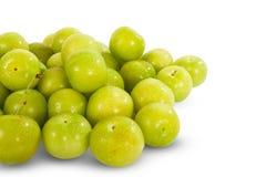 Green plum fruit Royalty Free Stock Image