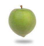 green plum Royalty Free Stock Image