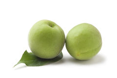 green plum Stock Images