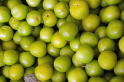 Green plums. Royalty Free Stock Photography