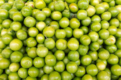 Green plums, background stock image