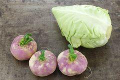 Green pointed cabbage and some spring turnips. On a grungy metal background royalty free stock images